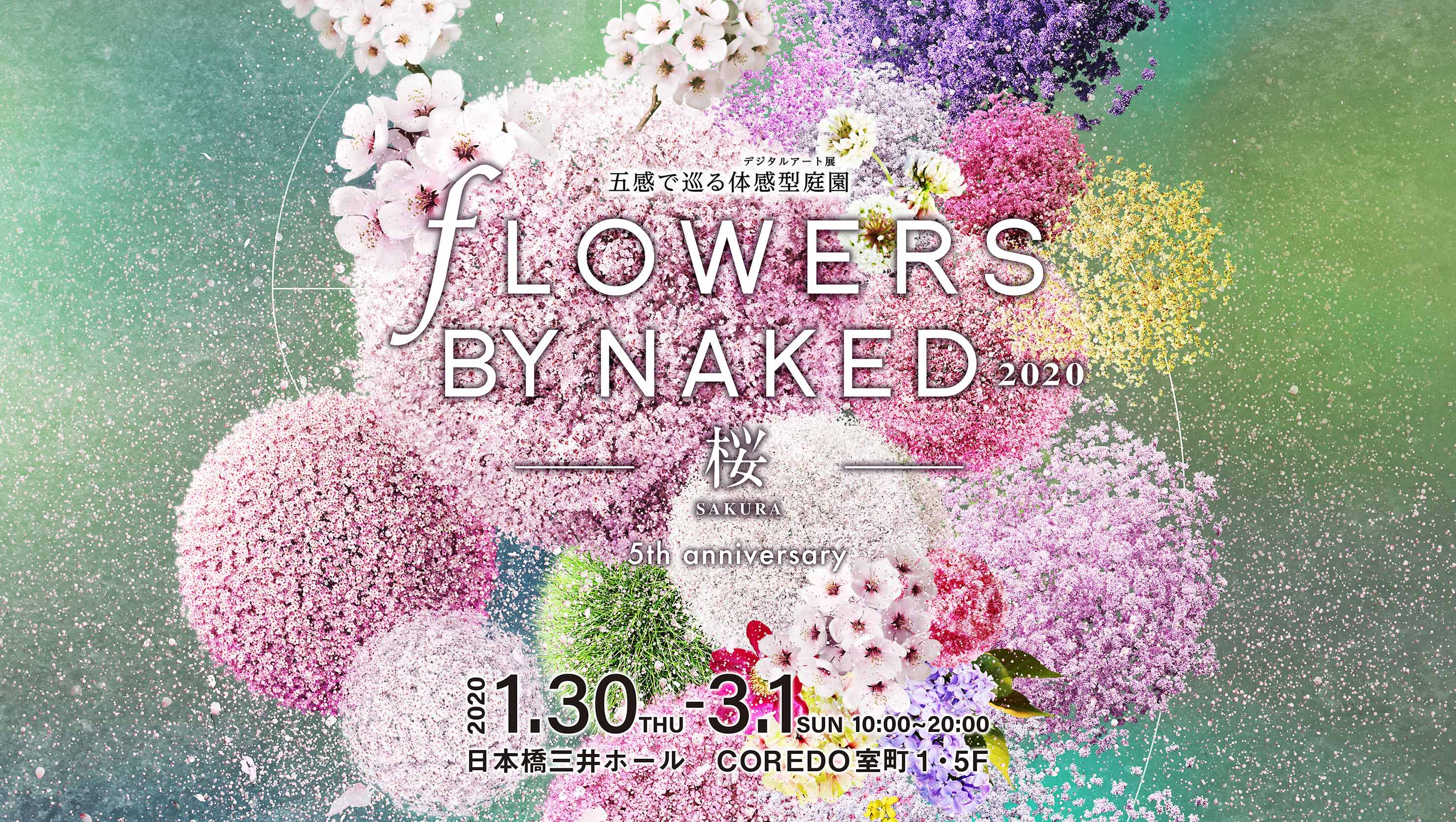 FLOWERS BY NAKED 2020 ー桜ー