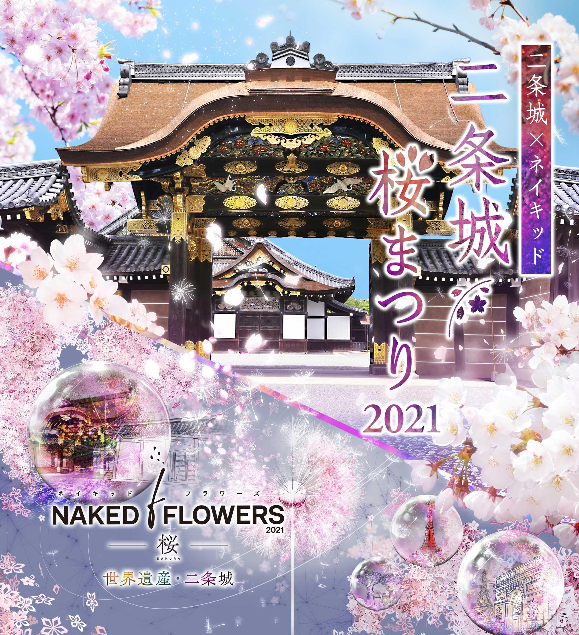 二条城×ネイキッド 二条城桜まつり2021