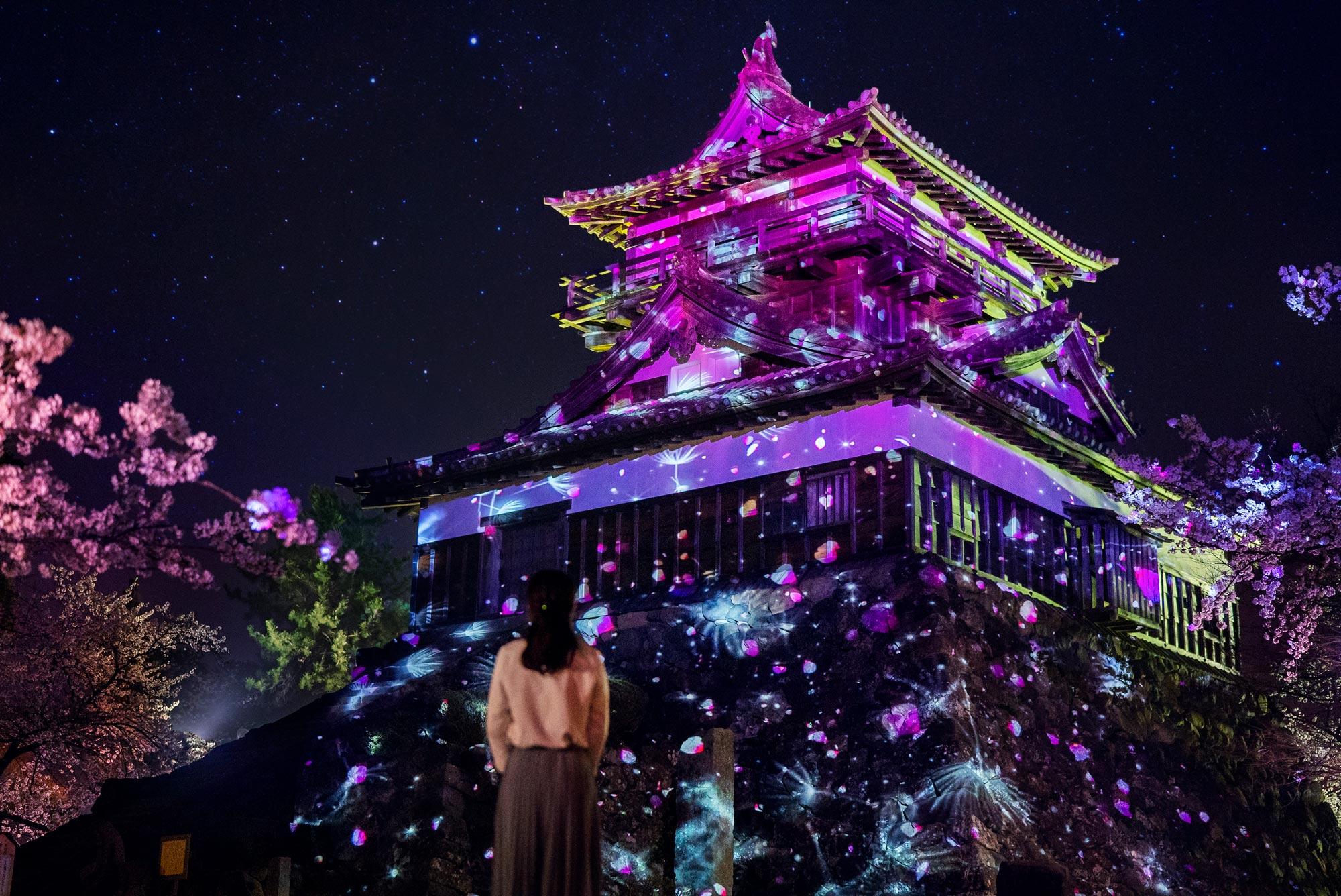 丸岡城×ネイキッド ヒカリ結び