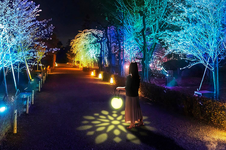 清流園ライトアップ『夏の灯(ともしび)』