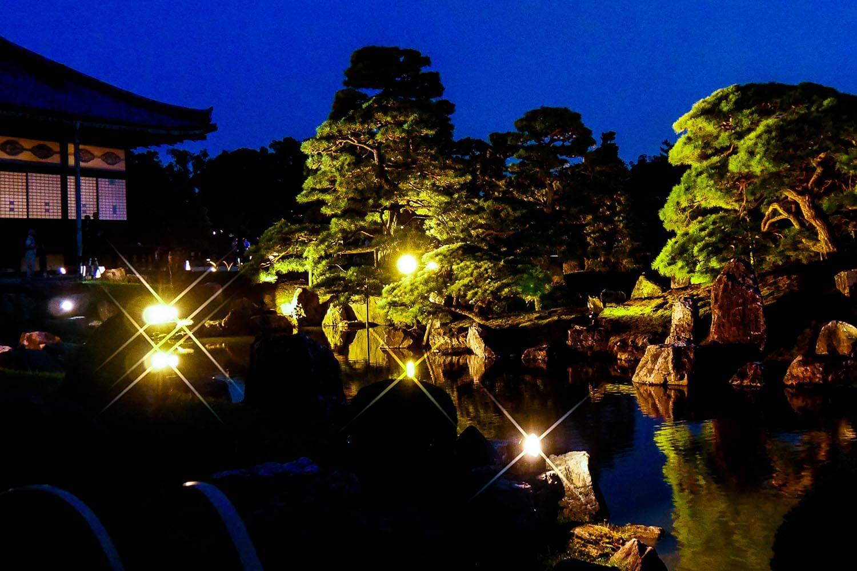 二の丸庭園ライトアップ