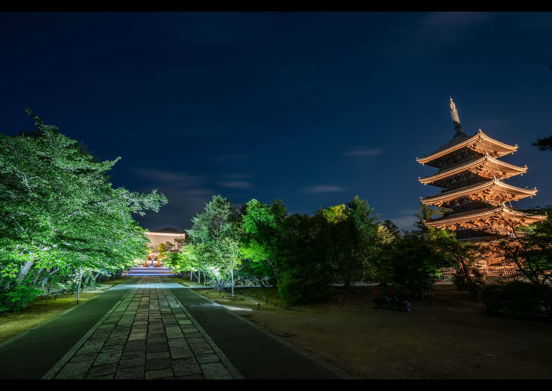 京都:仁和寺(国宝・世界遺産)