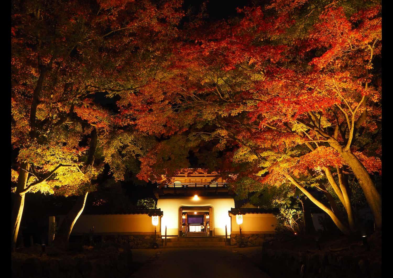 京都・興聖寺